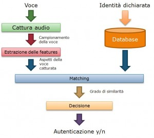 speech verification