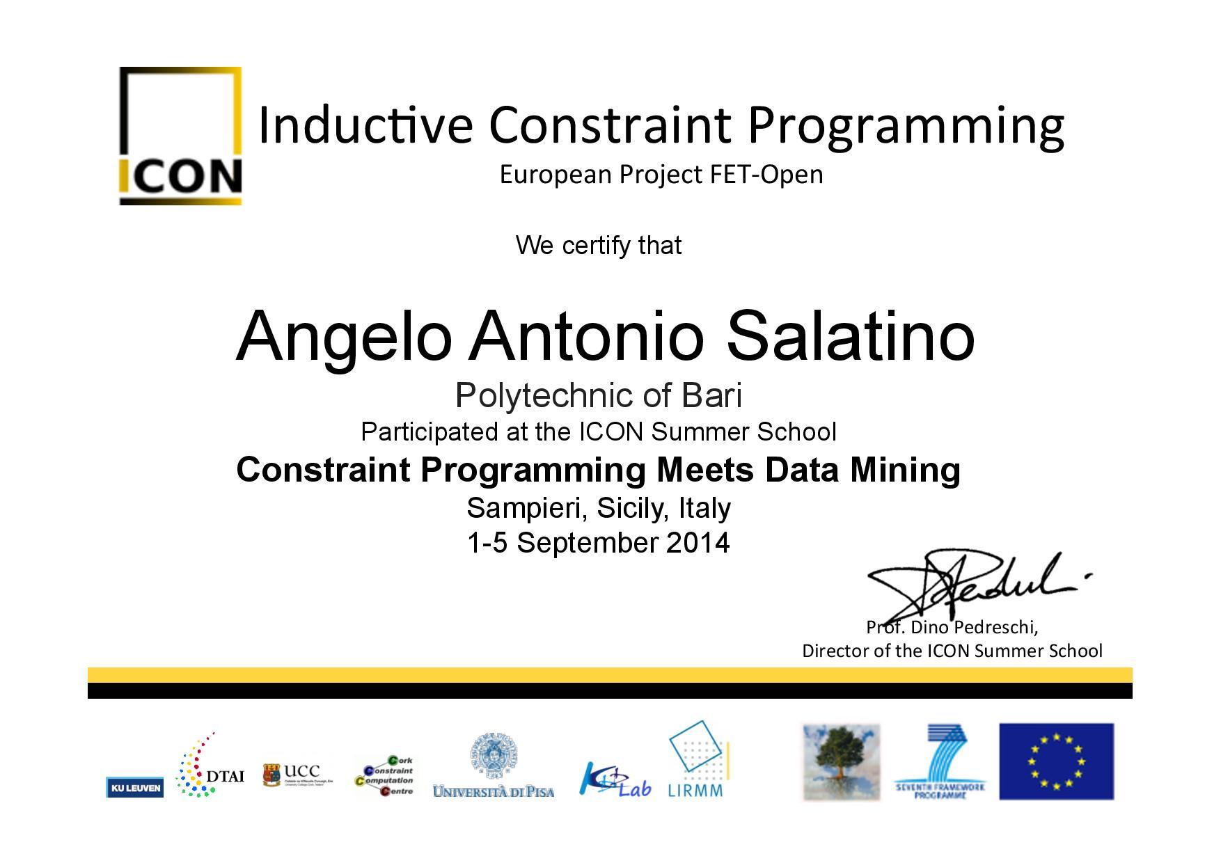 Participation Certificate - Salatino - ICON Summer School